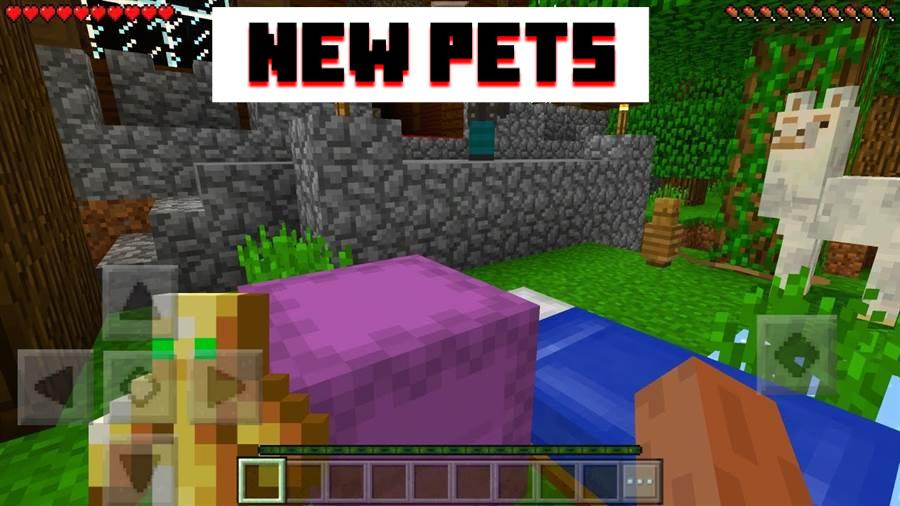 Pets MCPE 1.1.5 APK