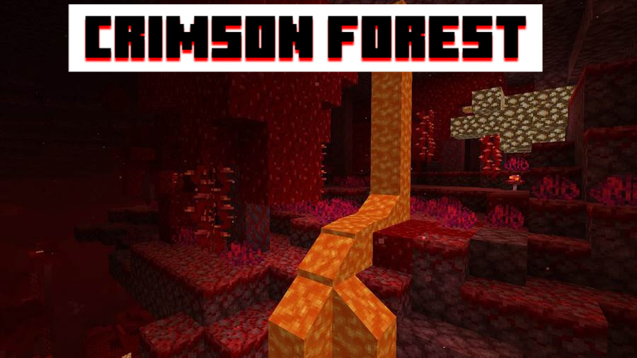 Crimson Forest in MCPE 1.16.20